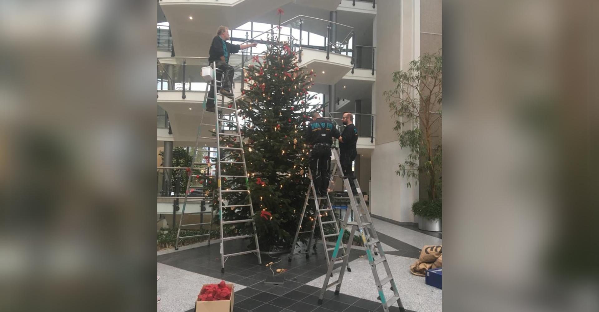 Weihnachtsbaum Sparkasse Hildesheim