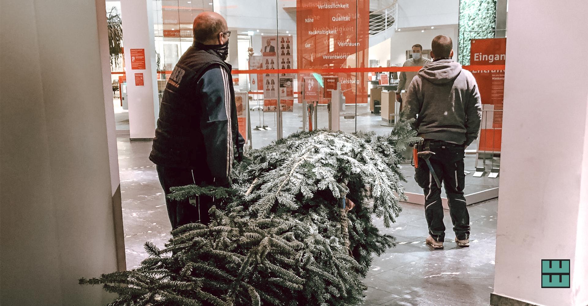 Auchin diesem Jahr wurde unsere Weihnachtszeit mit dem Aufstellen und Schmücken der Weihnachtsbäume für die Sparkasse Hildesheim-Goslar-Peine eingeläutet.