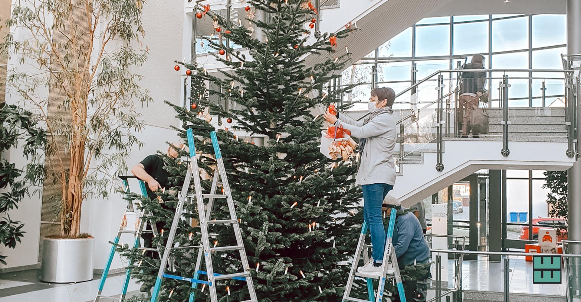 Auch diesen schönen Weihnachtsbaum in der Sparkassenfiliale in der Speicherstraße in Hildesheim haben wir aufgestellt und geschmückt.